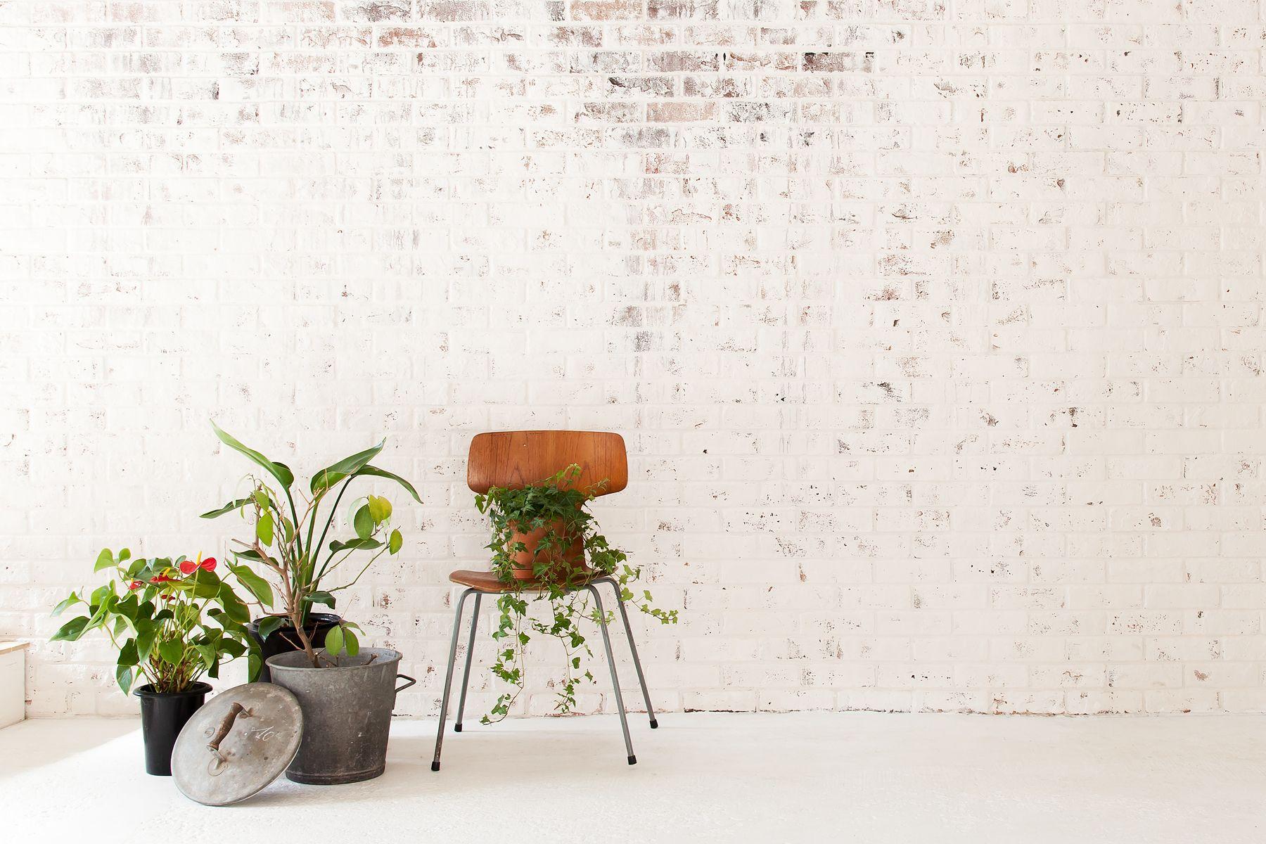 debolbe Studio&Warehouse (ディボルブ スタジオ)風合い豊かな白いレンガ壁
