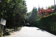 T's Studio ティーズスタジオ山中湖:駐車場