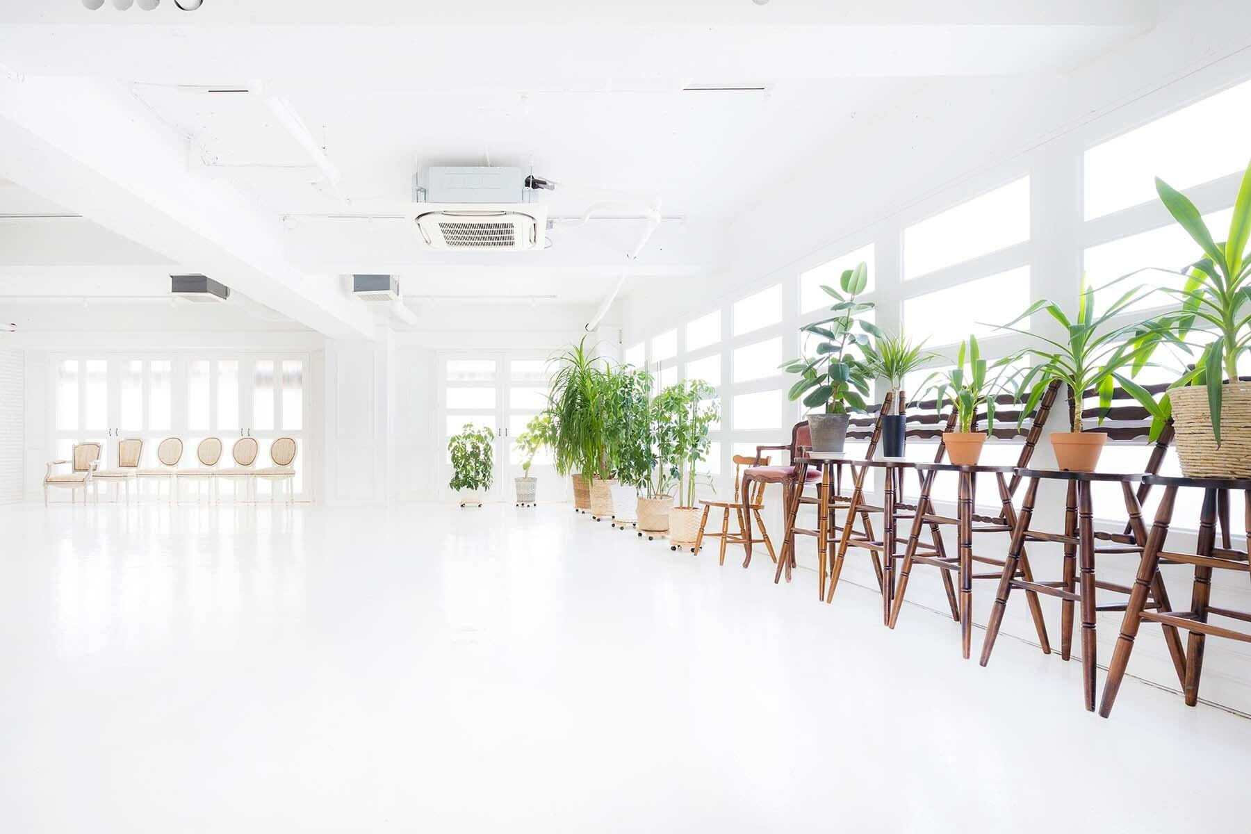 Studio Serato 笹塚 (スタジオセラート笹塚)全幅約9mの窓