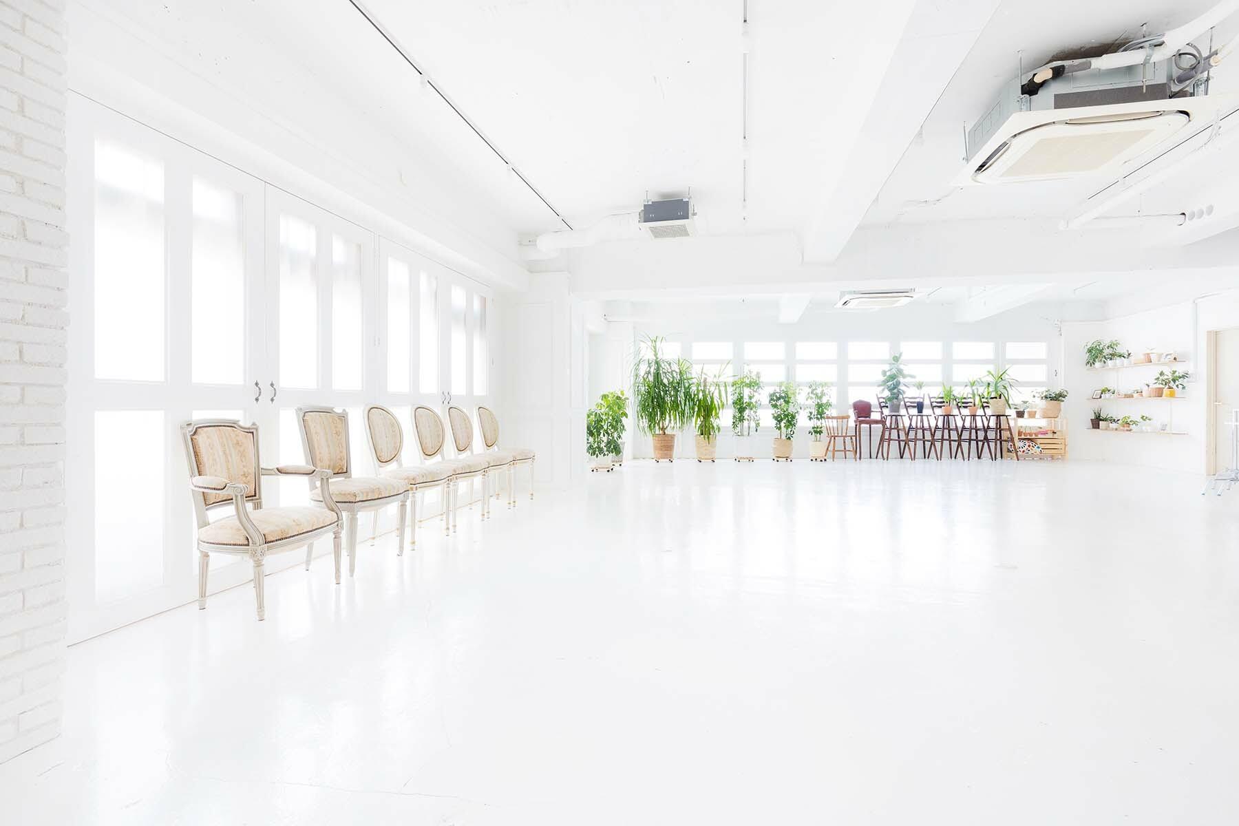 Studio Serato 笹塚 (スタジオセラート笹塚)広く明るい自然光スタジオ