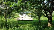グリーンゲーブル富士ヶ嶺 (グリーンゲーブルフジガネ):森から見た平屋