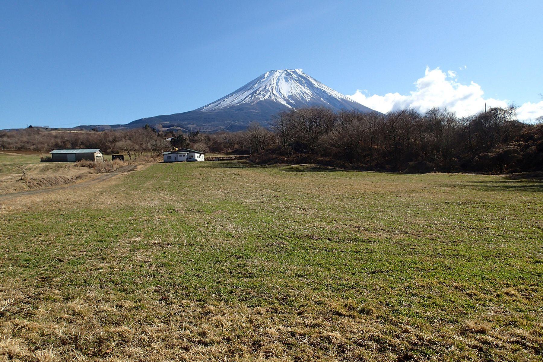 グリーンゲーブル富士ヶ嶺 (グリーンゲーブルフジガネ)2019年1月 牧草地