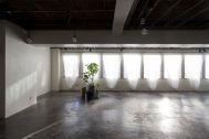 Studio EcoDeco (スタジオエコデコ):カーテンを通る柔らかい光