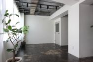 Studio EcoDeco (スタジオエコデコ):白壁