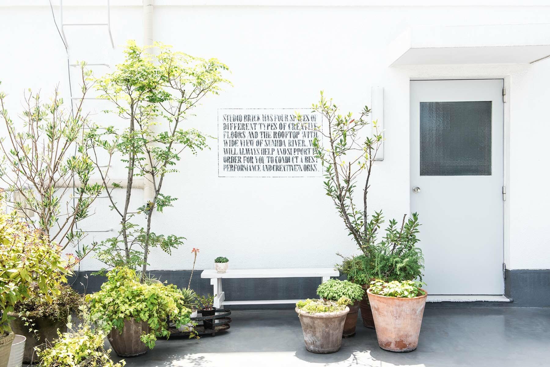 StudioBRICK RF (スタジオブリック八丁堀RF)植栽も豊富です(無料)
