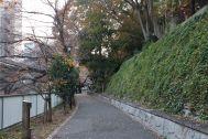 江戸端会議室 (エドバタカイギシツ):高架下