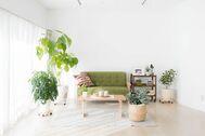 Studio Serato 代々木 (スタジオセラート代々木):自然光の入るシンプルな白壁
