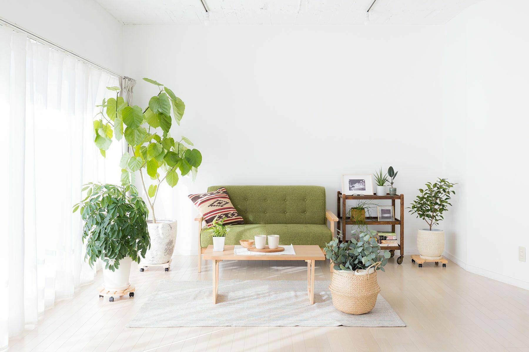 Studio Serato 代々木 (スタジオセラート代々木)自然光の入るシンプルな白壁