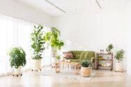 Studio Serato 代々木 (スタジオセラート代々木):使いやすい白壁と木目の床