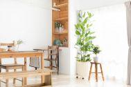 Studio Serato 代々木 (スタジオセラート代々木):展示会に便利なハンガーラック