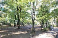 目黒区立 中央緑地公園: