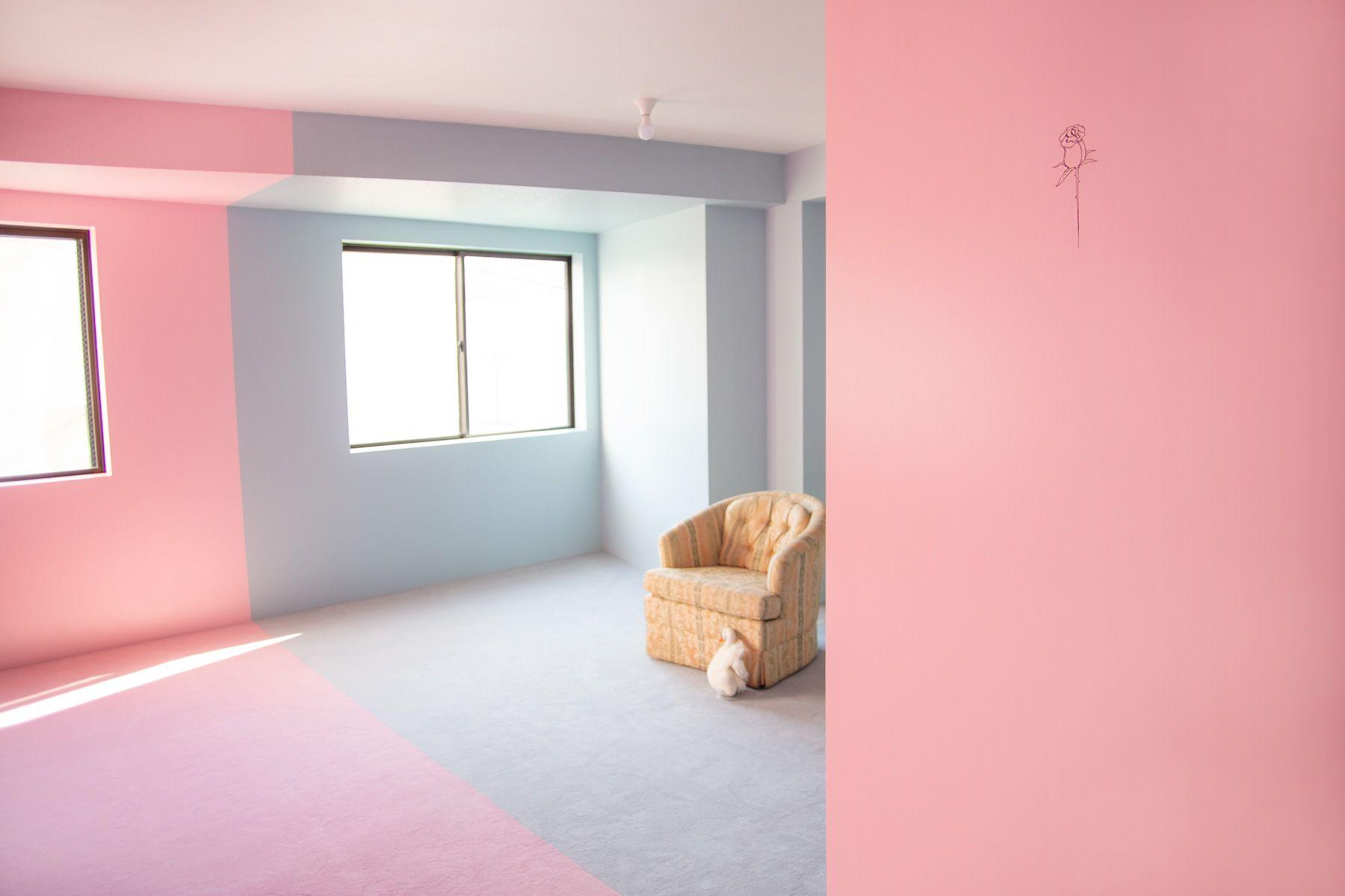 PANSY STUDIO(パンジースタジオ)カラーで分かれています