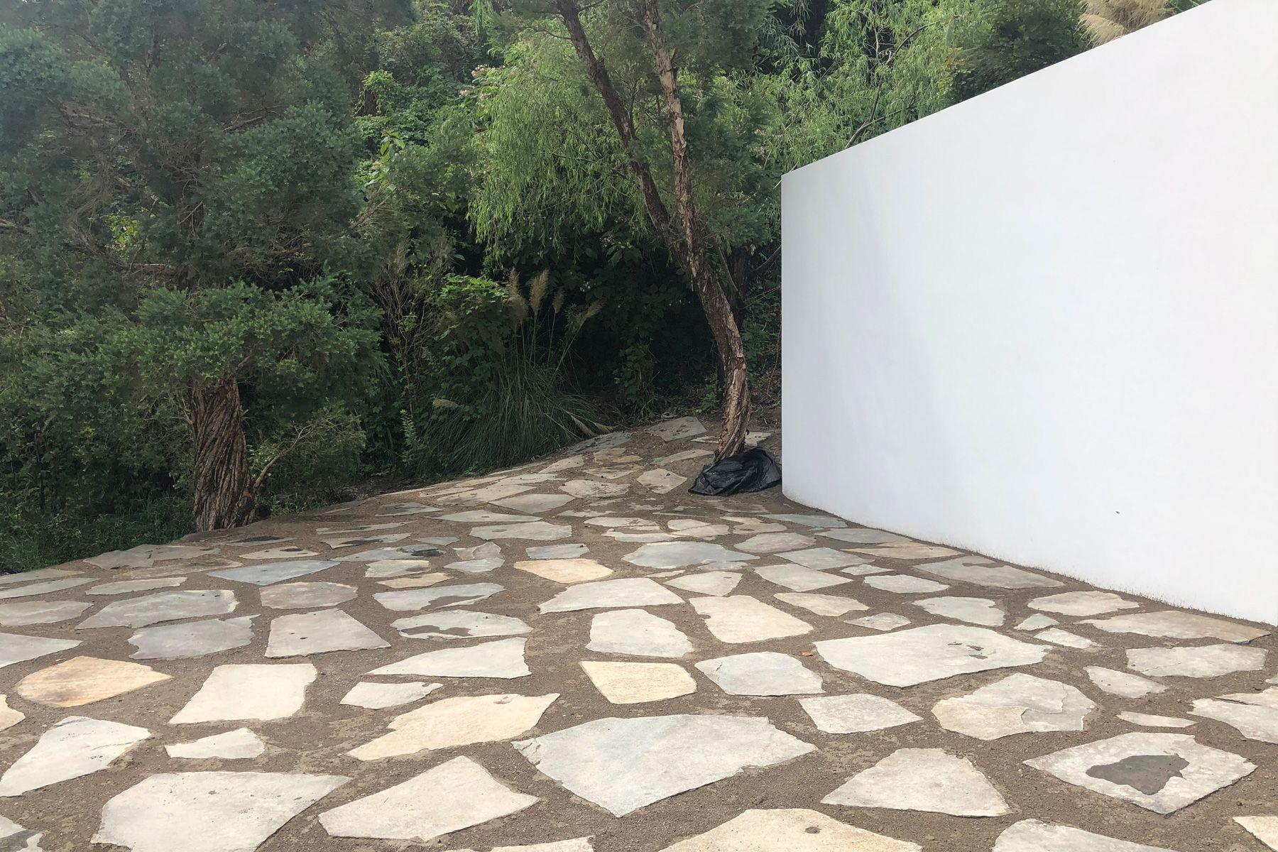 STUDIO TREE(スタジオツリー)ガーデン③