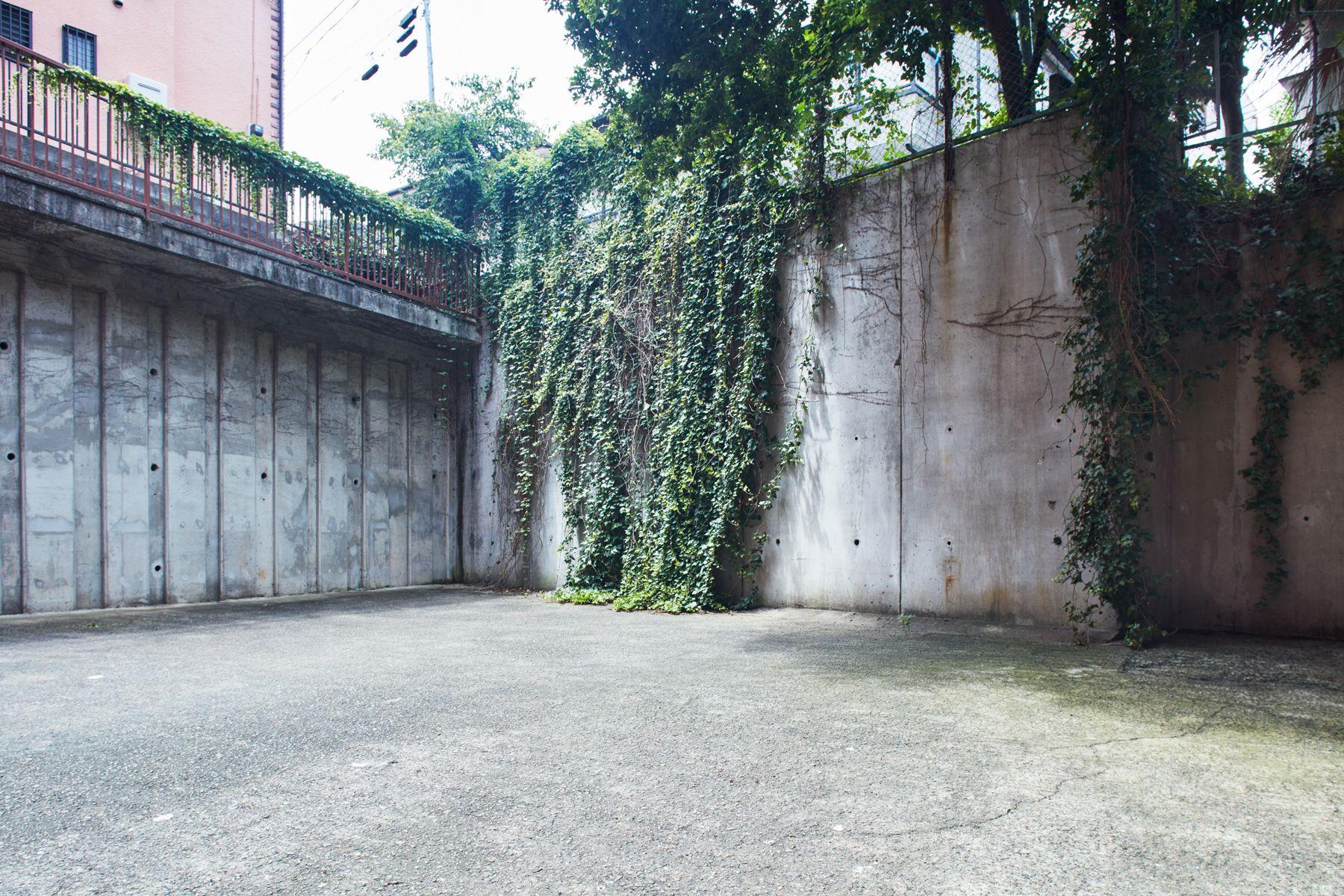noru studio (ノル スタジオ)中庭のコンクリート壁とグリーン