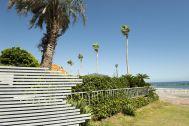 鴨川サーフィンハウス:ヤシの木と緑豊富な敷地