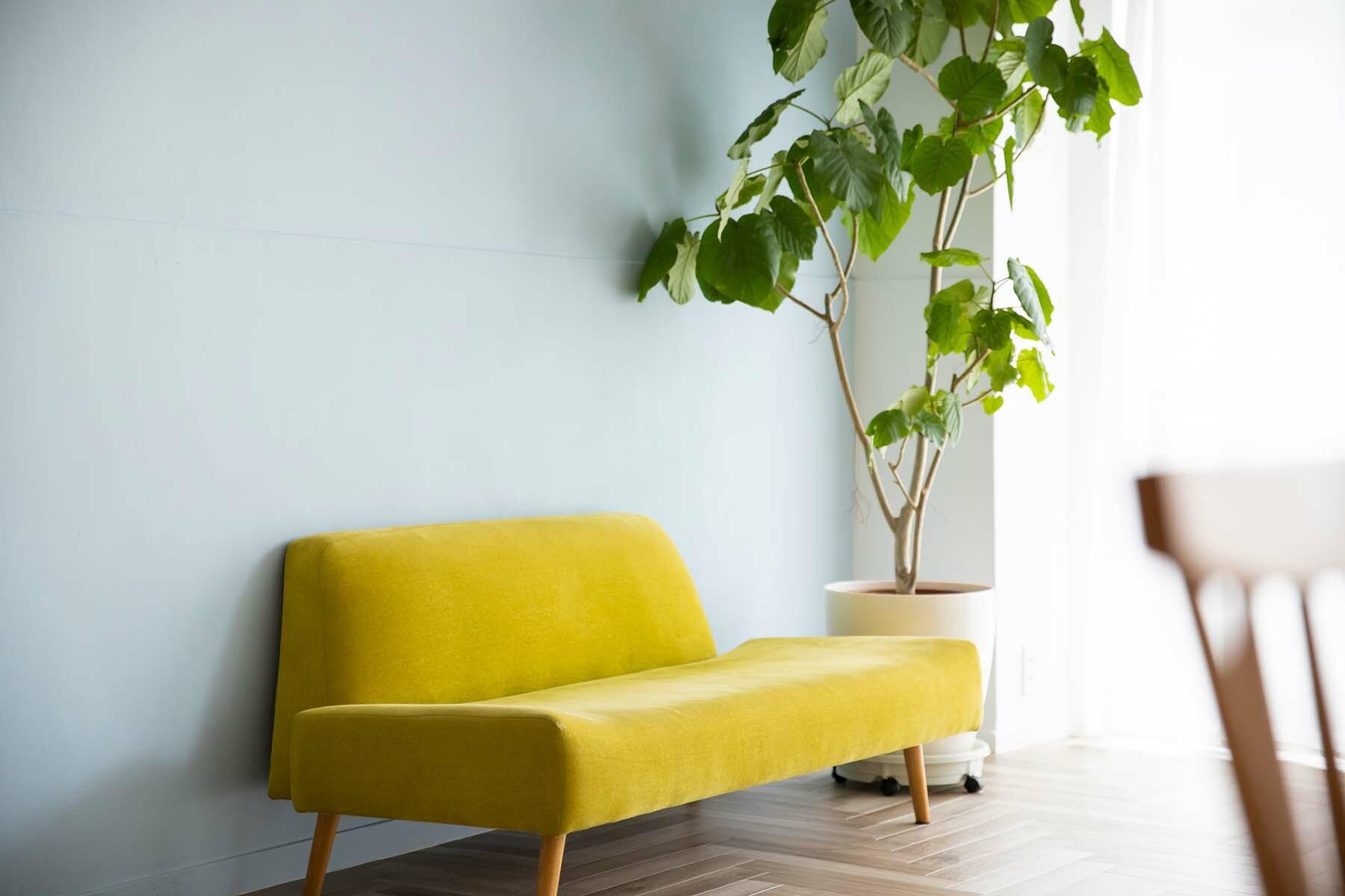 STUDIO NONAMES MEJIRO (スタジオ ノナメス メジロ)ペールカラーの壁2面