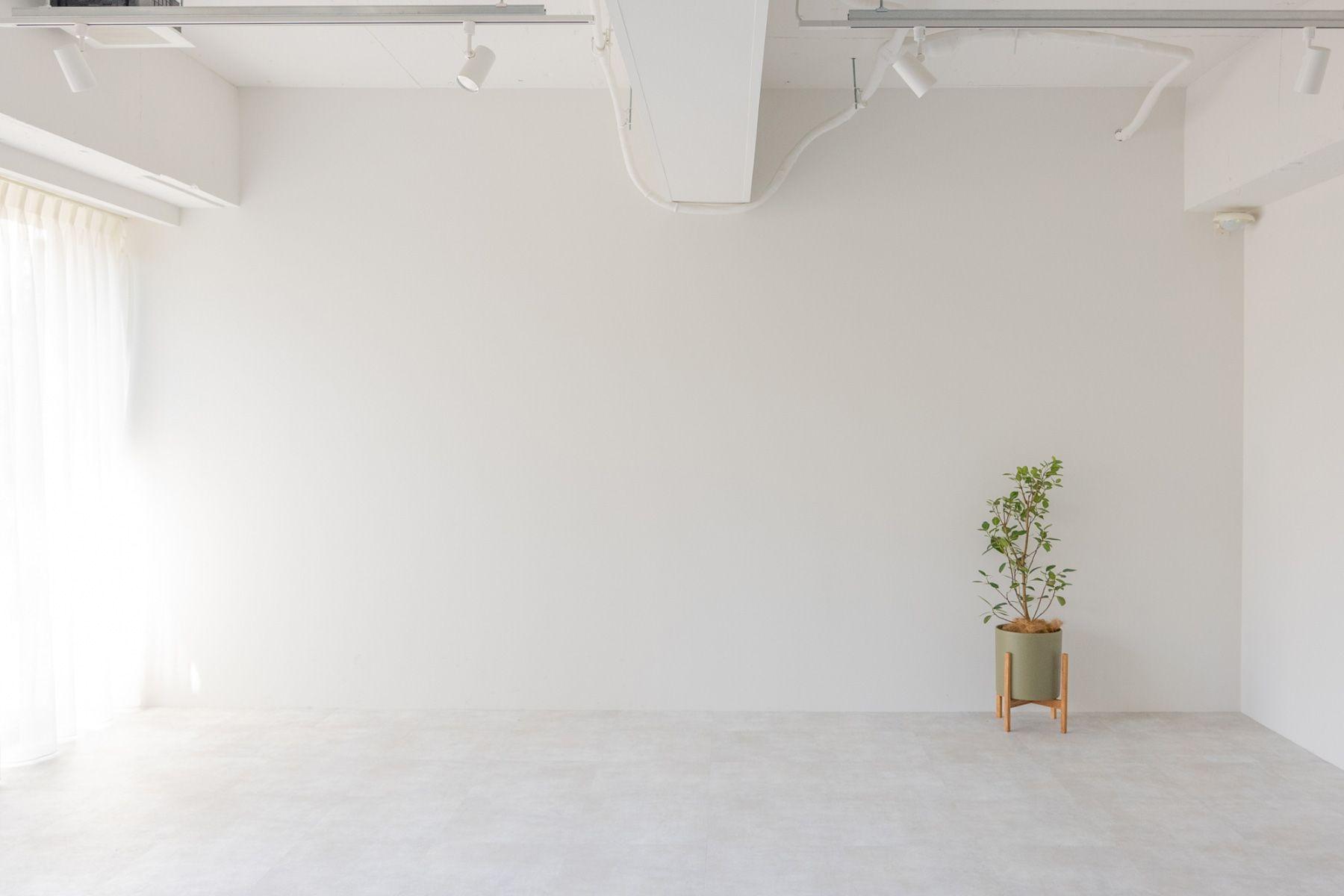 studio ankaa (スタジオ アンカー)白壁