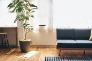 studio B (スタジオ ビー):2F 壁はパネルでアレンジ可能(白)