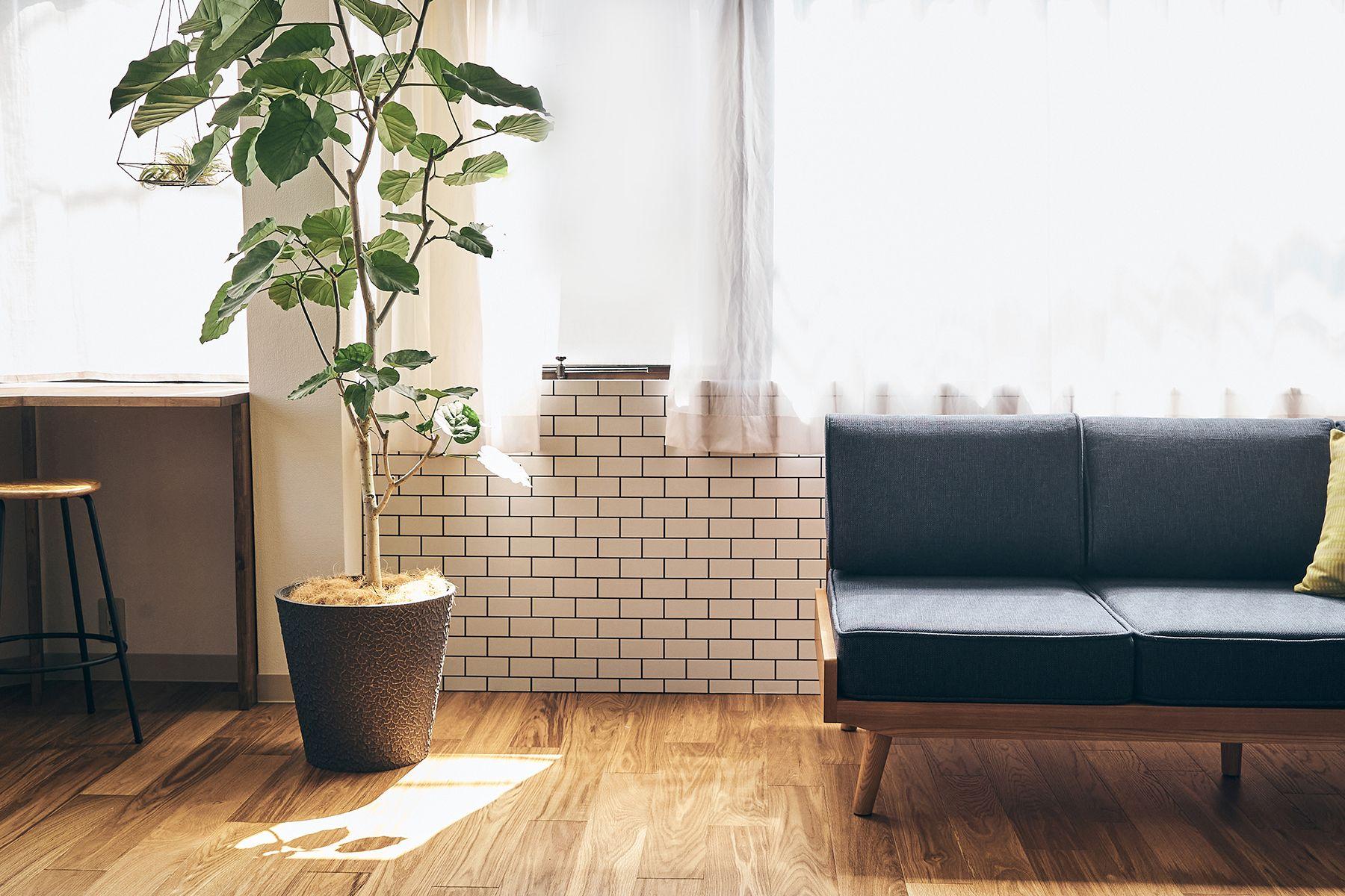 studio B (スタジオ ビー)2F 壁はパネルでアレンジ可能(タイル)