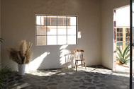 studioPatencio (スタジオパテンシオ):A棟前には椰子の木