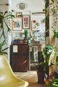 PLEASE GREEN(プリーズグリーン):本棚を彩る植物たち