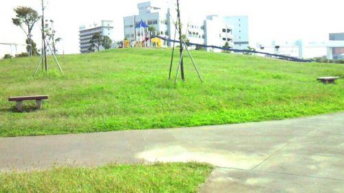 大森ふるさとの浜辺公園緑の広場