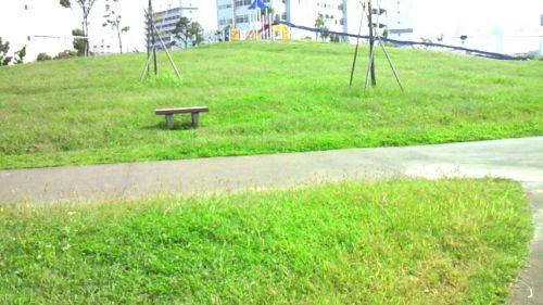 大森ふるさとの浜辺公園丘の広場