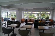 ANEA CAFÉ  松見坂/店舗 (アネアカフェ マツミザカ):壁一面窓のあかるい店内
