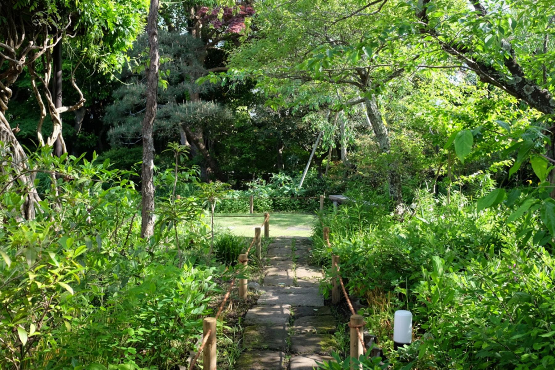 雪ノ下の茶亭庭抜けのフローリング部屋