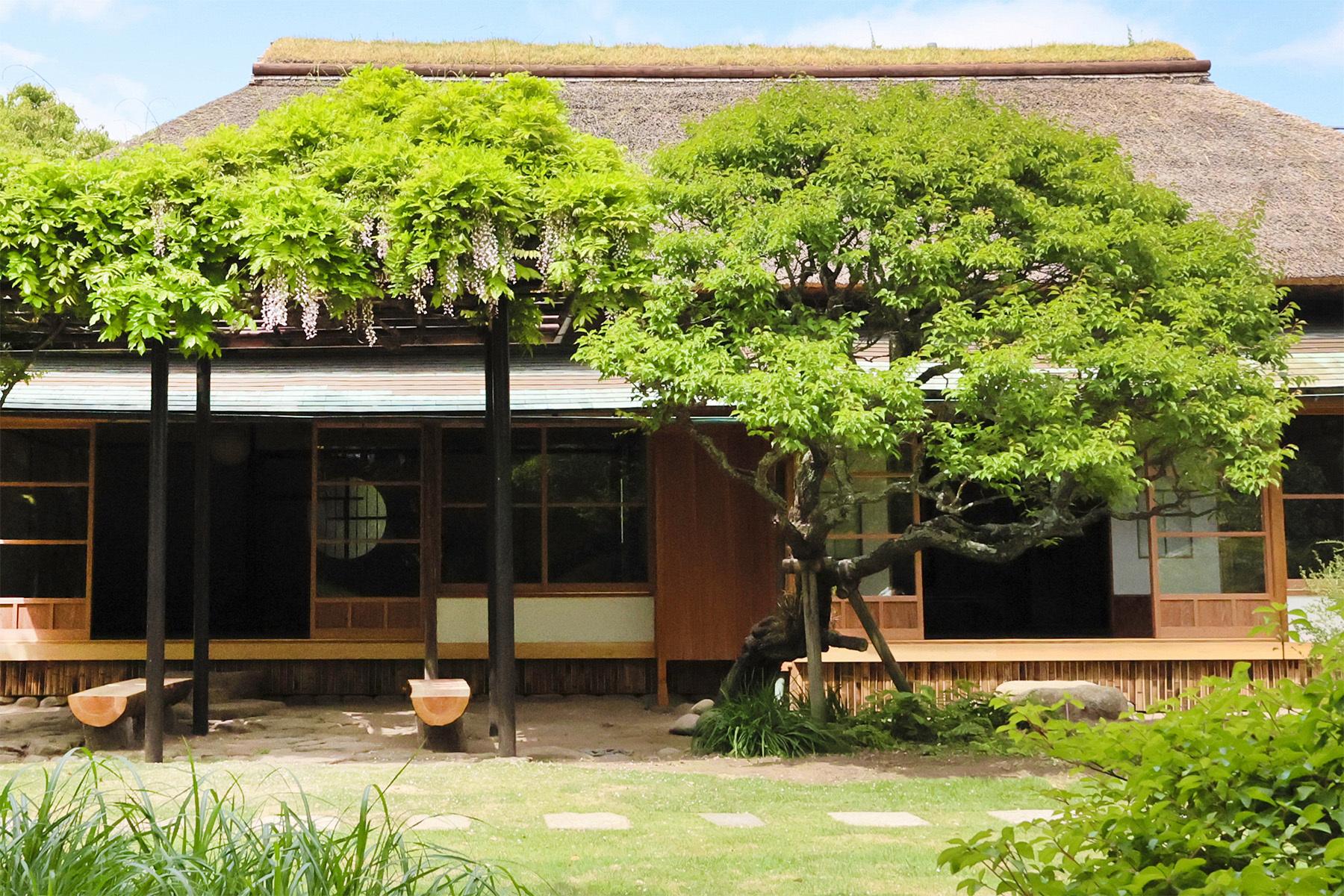 雪ノ下の茶亭茅葺き屋根の平屋