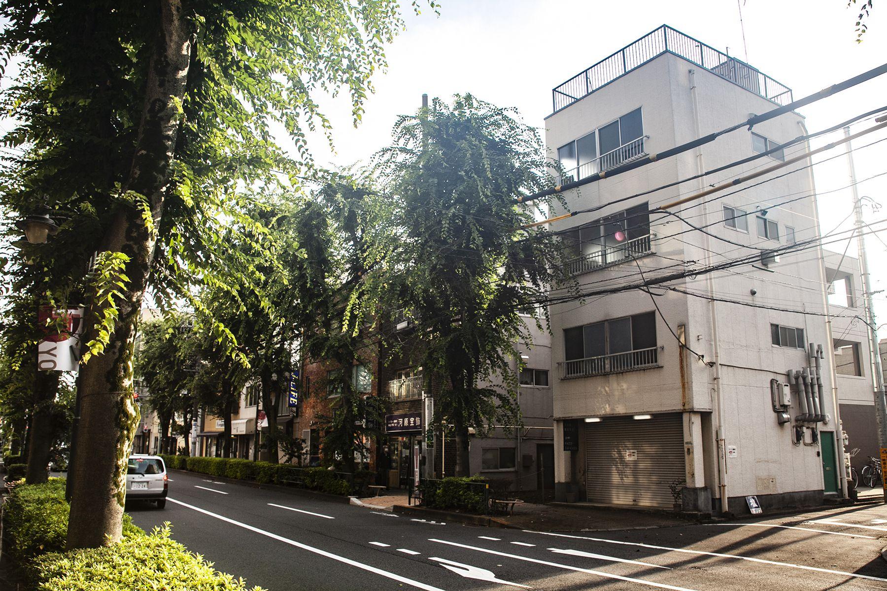 塩/シェアアトリエ (ropeマネジメントスペース)アトリエの雑居ビルとケヤキ並木