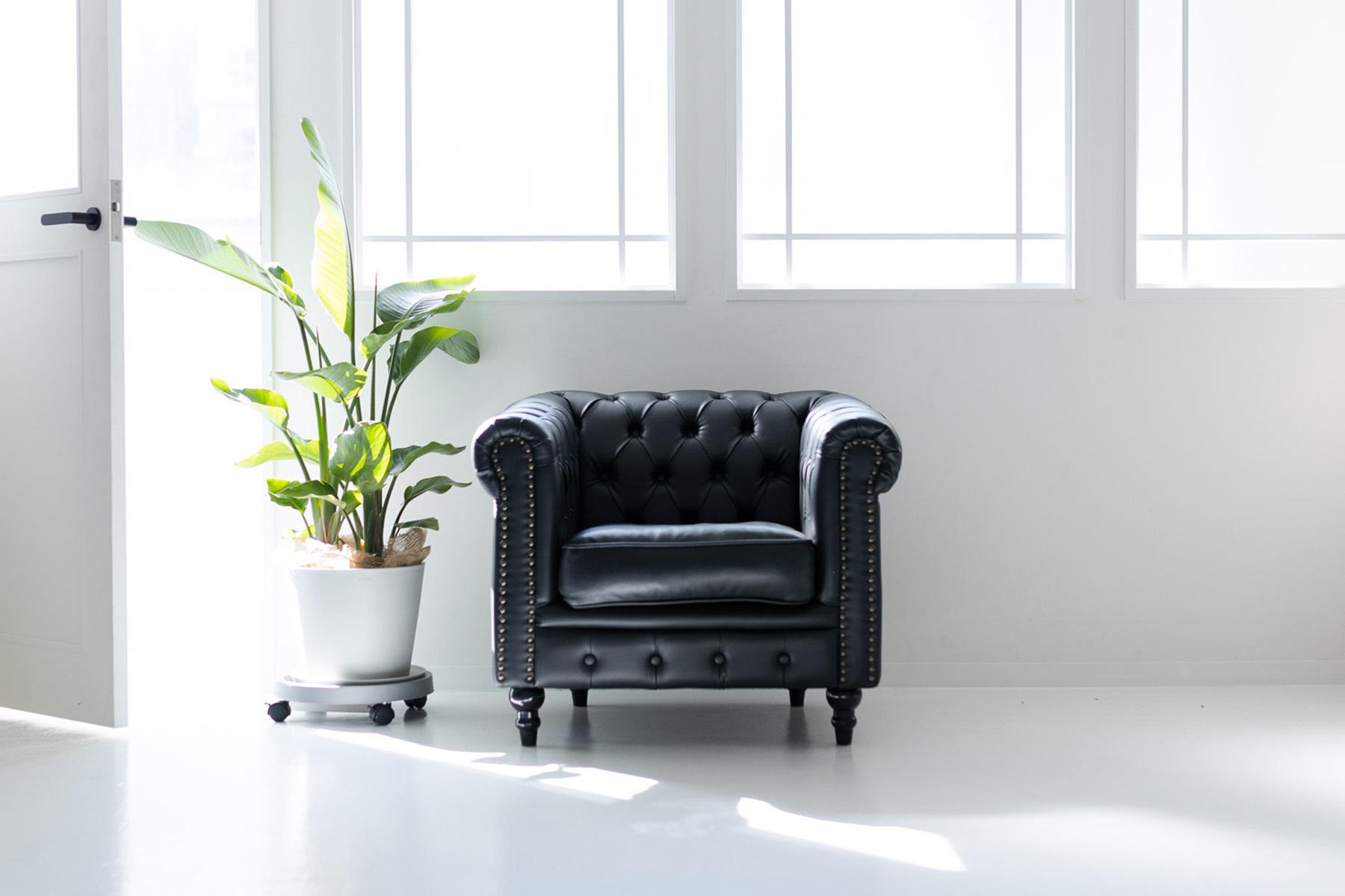 STUDIO FOXTAIL Ast (スタジオ フォックステイル Ast)引きも十分な奥行11mの広い空間