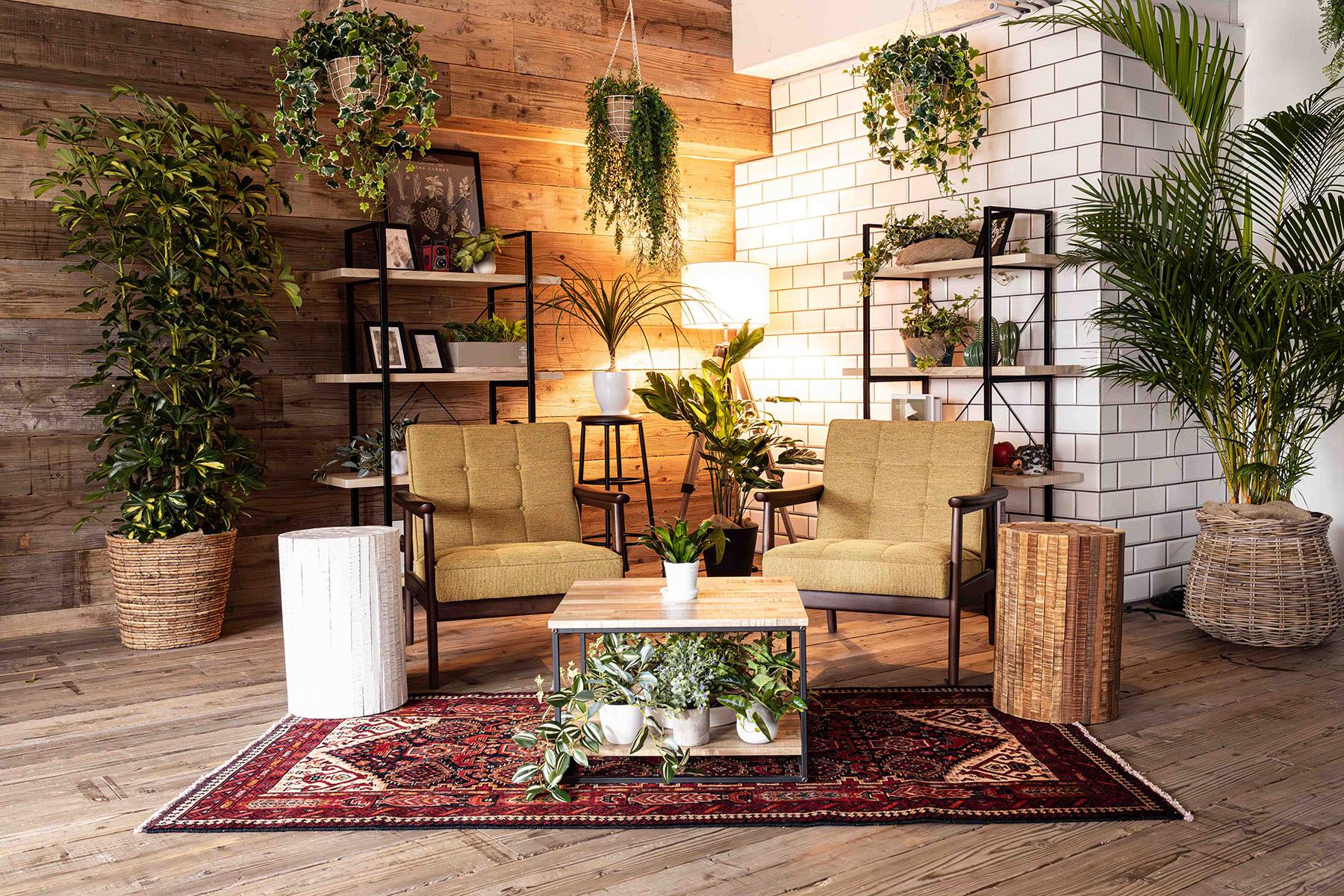 STUDIO FOXTAIL Bst (スタジオ フォックステイル Bst)備え付けの家具や小物でアレンジ