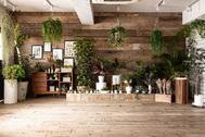 STUDIO FOXTAIL Bst (スタジオ フォックステイル Bst):キューブで階段やステージも自在