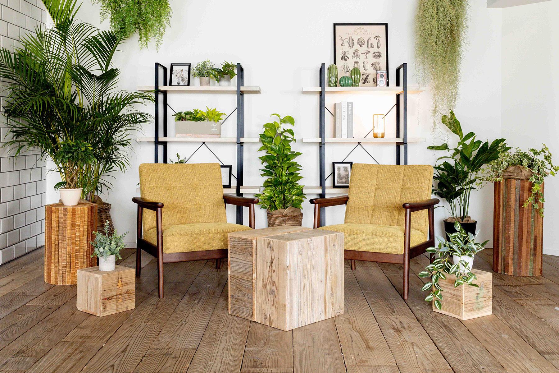 STUDIO FOXTAIL Bst (スタジオ フォックステイル Bst)天候を気にせず窓裏照明が可能