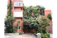 micotoya house (アイス屋/青果屋/shop):建物を蔦が覆う