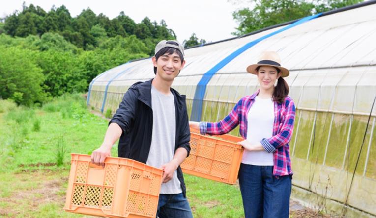 【若手社長の開業日記】稼げる農家を育てるために週4日農地に赴く税理士