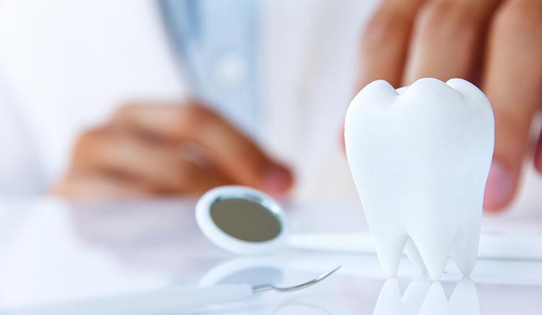 飲食業経営者から社会保険労務士へ! 経験ゼロから医科・歯科に強い事務所に成長した秘訣とは!?