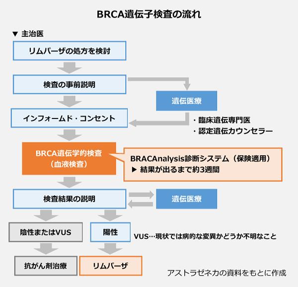 BRCA遺伝子検査の流れの図。リムパーザの処方を検討→検査の事前説明→遺伝医療(臨床遺伝専門医/認定遺伝カウンセラー)→インフォームドコンセント→BRCA遺伝学的検査(血液検査)[BRACAnalysis診断システム(保険適用)]結果が出るまで約3週間→結果の説明。陽性の場合、リムパーザ。陰性またはVUSの場合、抗がん剤治療。