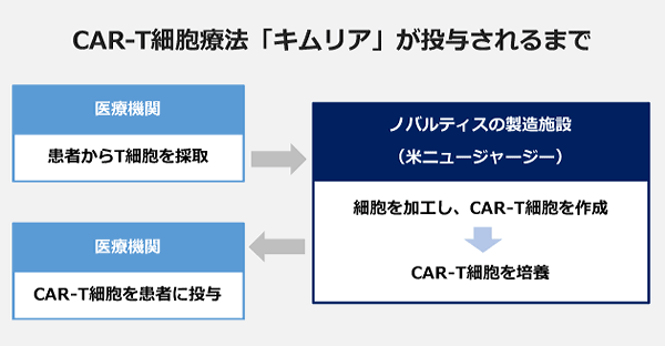 CAR-T細胞療法「キムリア」が投与されるまでの図。【医療機関】患者からT細胞を採取→【ノバルティスの製造施設(米ニュージャージー)】細胞を加工し、CAR-T細胞を作成・CAR-T細胞を培養→【医療機関】CAR-T細胞を患者に投与
