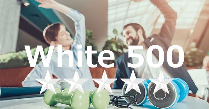white500_2020_title