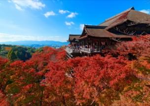 清水寺の紅葉イメージ