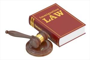 法律書と木槌