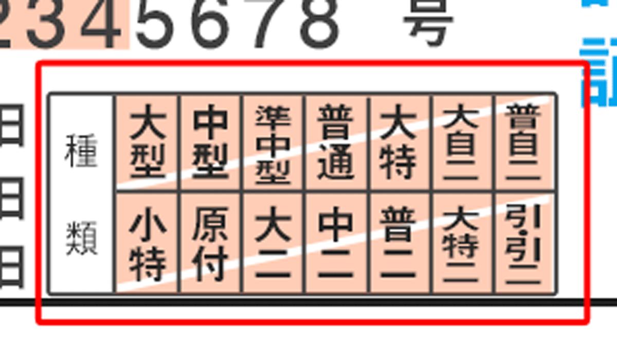 免許証の取得日の横の種類欄の見本