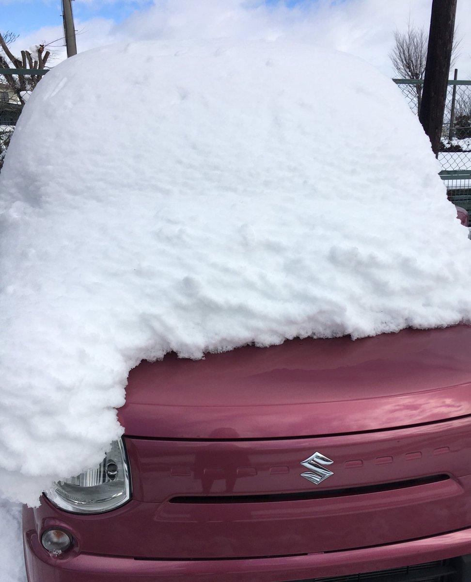 オギャャァァァァ😭😭😭😭😭😭😭😭😭😭(雪かきできるもの積んでなかったので車にあったエクスカリバーで雪かきしてる)