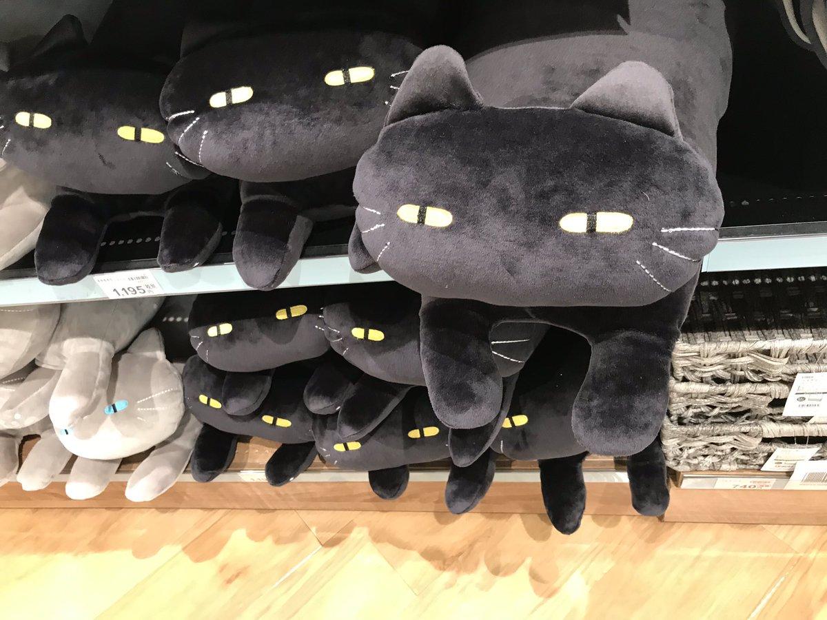 先日ニトリで見かけた黒猫クッション。我慢出来ずに購入しましたwww