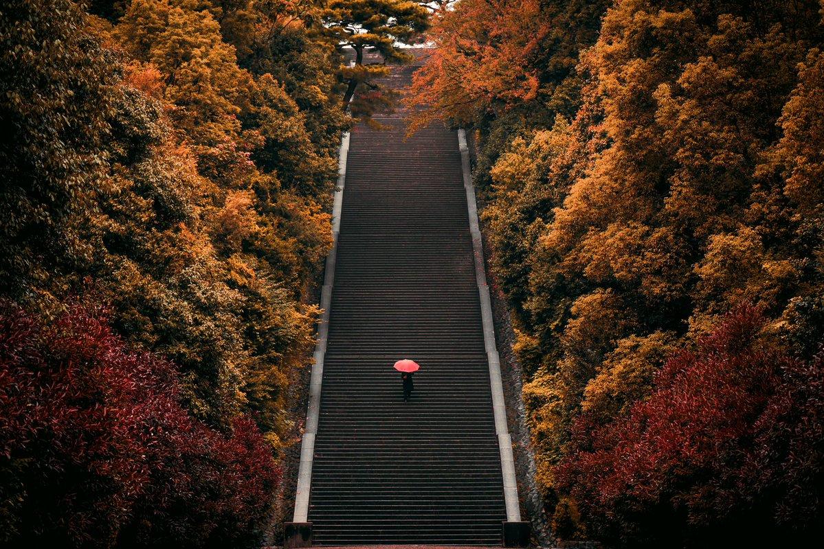 京都駅ビル大階段より圧巻な大階段が京都にはあります。