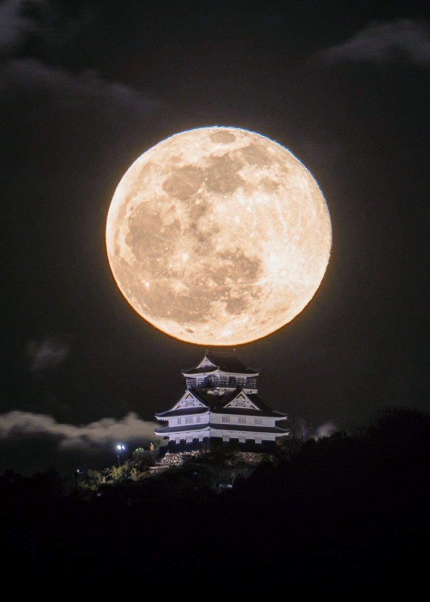 『岐阜城と月』日本代表クラスの絶景。