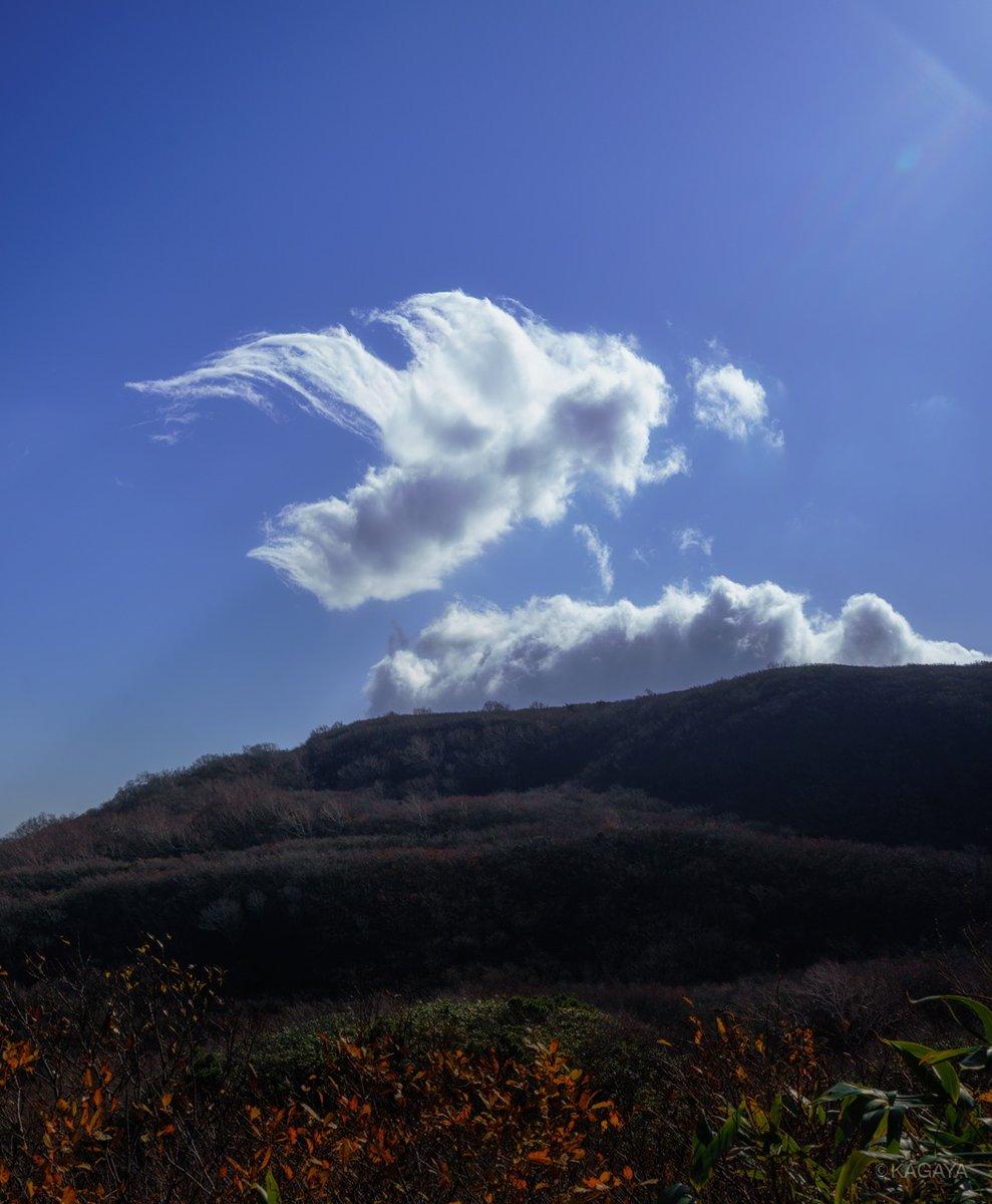 秋空に浮かぶ、天使のような。 (本日、秋田県にて撮影)