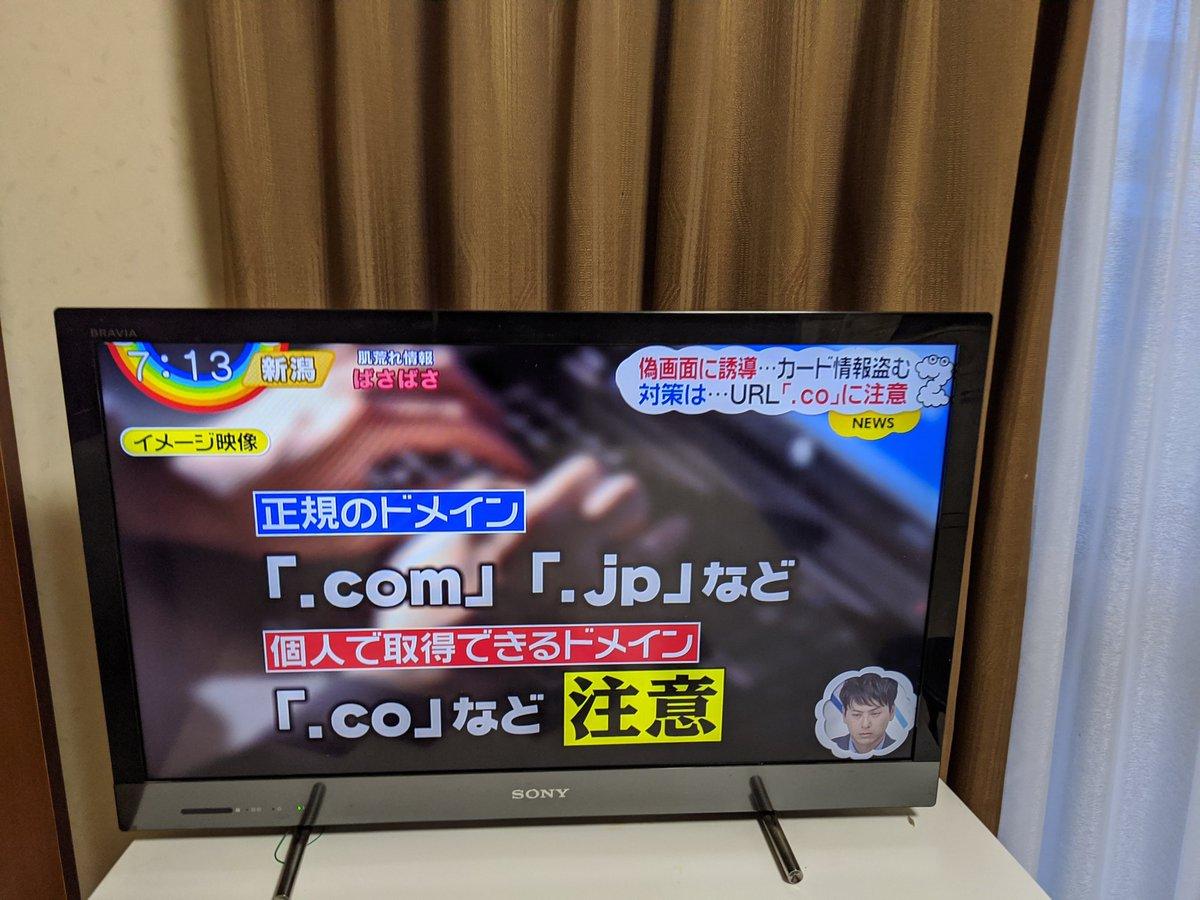 .com や .jp も個人で取得できるし、 .co も正規のドメインなので、この説明はミスリード